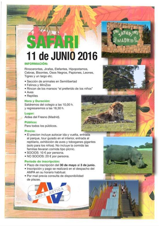 SAFARI  11 JUNIO